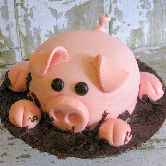 Ảnh lợn đáng yêu đang nằm trên chiếc bánh sinh nhật happy birthday