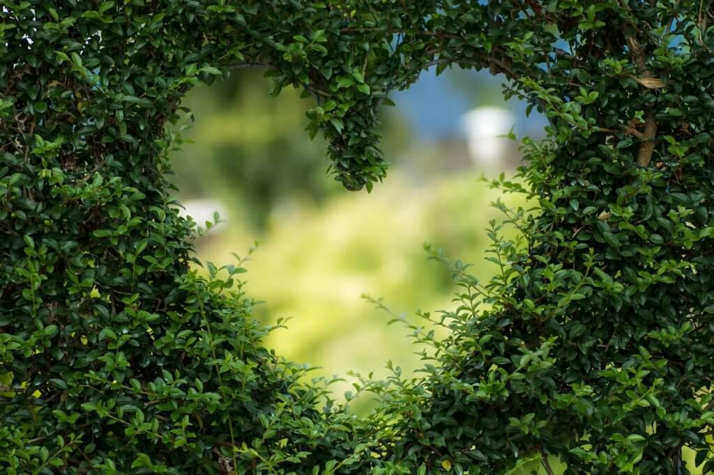 Ấn tượng những hình ảnh về tình yêu đẹp có trái tim