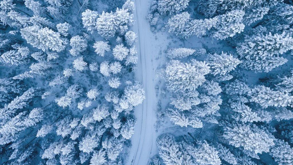 Bức ảnh thiên nhiên đẹp vào mùa đông
