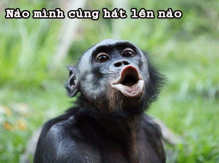 Nhung hinh anh hai nhat the gioi co the ban khong biet