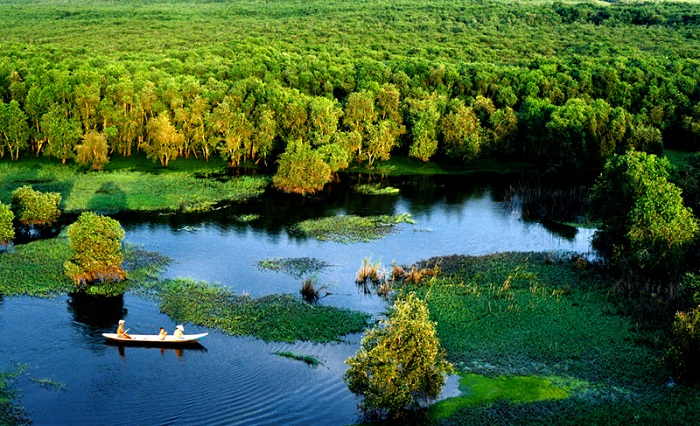 Rừng Tràm Sư - Một trong các khu du lịch sinh thái ở An Giang