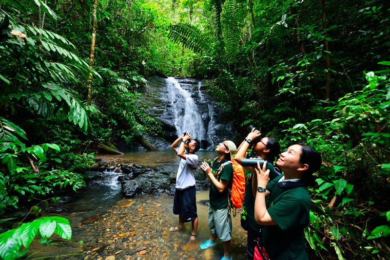 Tìm hiểu đất nước Brunei - Công viên quốc gia Ulu Temburong