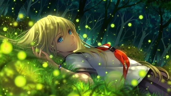 Anime ảnh đẹp trên ngọn đồi đom đóm