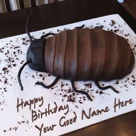 Bánh sinh nhật hai huoc bạn có thể tham khảo