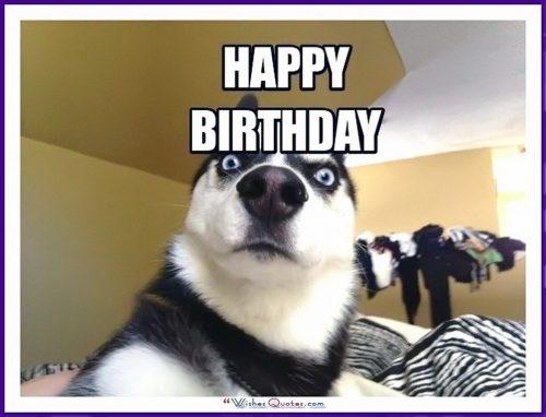Tải hình ảnh chúc mừng sinh nhật miễn phí